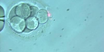 infertility treatment in chennai